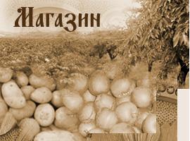 http://blagoveshtenie.bg/uploads/images/page_types/img_magazin_2.png